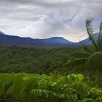 Ten Reasons We Love The Black Island