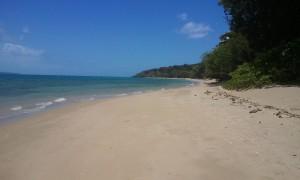 beach ahoy
